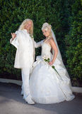 Newly wedded couple in the park Royalty Free Stock Photography