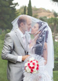 Newly wedded couple in the park Stock Photography