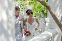 Newly wedded couple in the park Royalty Free Stock Image
