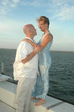 Newly Weds Stock Photography