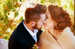 Newly weds going to kiss Stock Photos