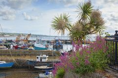 Newlyn Cornwall UK arkivbilder