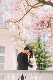 Newlywed bride and groom kissing under blossoming magnolia tree. Vintage villa at background Royalty Free Stock Images