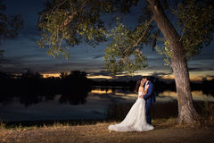 Newlywed couple by lake at sunset. Newlywed bride and groom embracing under tree by picturesque lake at sunset Royalty Free Stock Photos