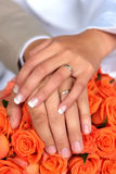 Newlywed couple Royalty Free Stock Image