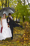 Newlywed couple in autumn park Royalty Free Stock Photos