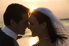 Newlywed Couple on Beach Royalty Free Stock Images