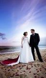 Newlywed couple on beach Stock Image
