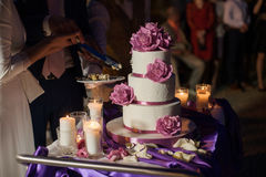 Newlywed couple carving delicious white wedding cake Royalty Free Stock Images