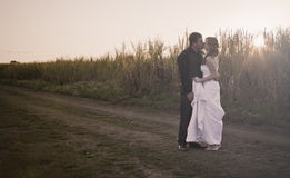 Newlywed couple in countryside royalty free stock photo