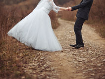 Newlywed couple at countryside. Wedding. Royalty Free Stock Images