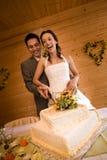 Newlywed couple cutting cake Stock Photography