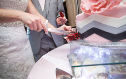 Newlywed couple cutting cake Stock Image