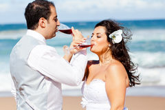 Newlywed couple drinking champagne Stock Photos