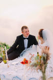 The newlywed couple is enjoying the wedding picnic near the sea. royalty free stock photography