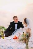 The newlywed couple is enjoying the wedding picnic near the sea. The newlywed couple is enjoying the wedding picnic near the sea Royalty Free Stock Photography