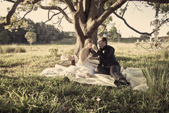 Newlywed couple in field Royalty Free Stock Photo