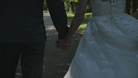 A newlywed couple go to the Park and talk. The bride and groom on a walk, the Park, Steadicam, camera movement stock footage