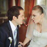 Newlywed couple going crazy. Stock Image