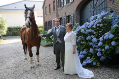 Newlywed couple  and horse Stock Photo
