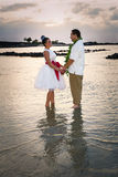 Bride and Groom at Dusk Stock Photography