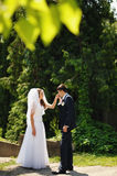 Newlywed couple together. Stock Photography