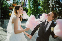 Newlywed happy funny couple Royalty Free Stock Images