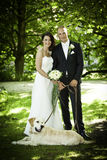 Newlywed portrait of couple with bouquet and dog Royalty Free Stock Images