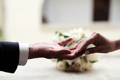 Newlywed at the wedding holding hands. On celebration background, horizontal picture Stock Photos