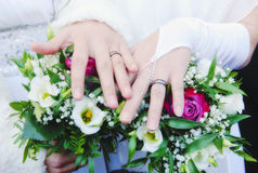 Newlywed Women Showing their Rings. Lesbian Wedding - Newlywed Women Showing their Rings Royalty Free Stock Photos