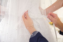Newlywed young man undressing bride Stock Photos