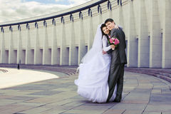 newlyweds Immagine Stock