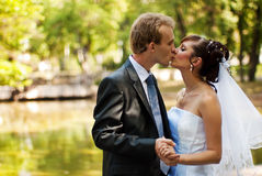 Newlyweds. Kissing in a park, holding hands stock images