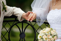 Newlyweds. Bride and groom joined their hands stock images