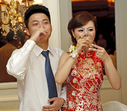 Newlyweds imagem de stock royalty free
