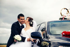 Newlyweds Royalty Free Stock Images