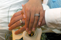 Newlyweds. A closeup of a bride and groom's hands, highlighting their newly-exchanged wedding bands Stock Photo