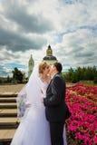 newlyweds royalty-vrije stock foto