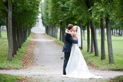 newlyweds Fotografie Stock Libere da Diritti