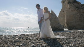The newlyweds admire the view of the ocean stock video