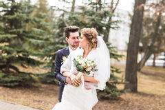 Newlyweds in autumn park, the groom embracing his bride. Stock Photography