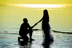 Newlyweds on the beach Royalty Free Stock Image