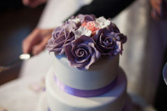 Newlyweds carving delicious white wedding cake with purple roses Royalty Free Stock Photo