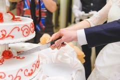 Newlyweds che tagliano torta Fotografie Stock