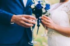 Newlyweds clinking glasses Stock Photo