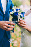 Newlyweds clinking glasses Royalty Free Stock Photography