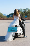 Newlyweds couple stock photos