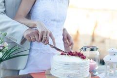 The newlyweds cut a beautiful white wedding cake Stock Images