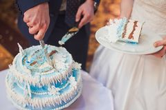 Happy beautiful newlyweds cut cake in restaurant. Newlyweds cut cake in restaurant royalty free stock photo