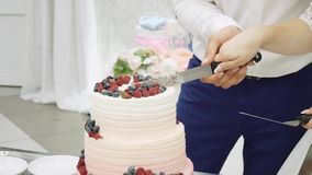 The newlyweds cut the wedding cake with a knife stock footage